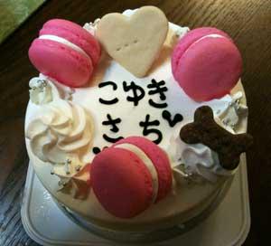 cake20123.jpg